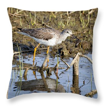What A Meal Throw Pillow