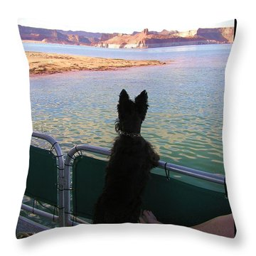 Throw Pillow featuring the photograph What A View by Michele Penner
