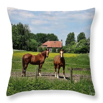 What Are You Staring At? Throw Pillow by Bedros Awak