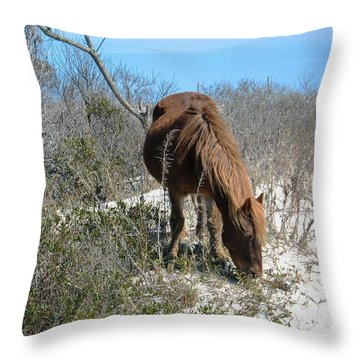 Throw Pillow featuring the photograph What Do I See Here? by Photographic Arts And Design Studio