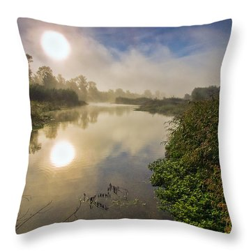 What Dreams May Come Throw Pillow by Davorin Mance