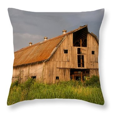 What Happened To The American Dream Throw Pillow