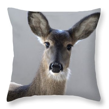 What Is Up With Mike? Throw Pillow by Bill Stephens