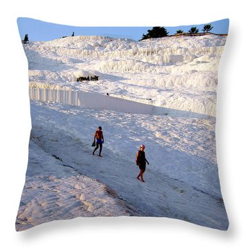 What Is Wrong In This Picture Throw Pillow by Zafer Gurel