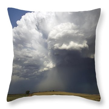 What Lies Ahead Throw Pillow