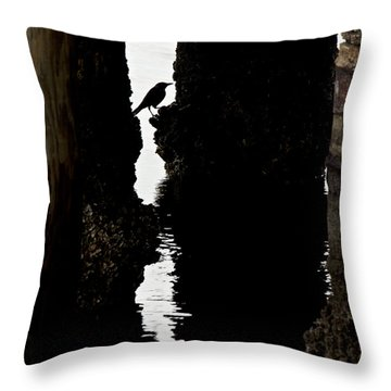 What Lies Beneath Throw Pillow by Penny Meyers