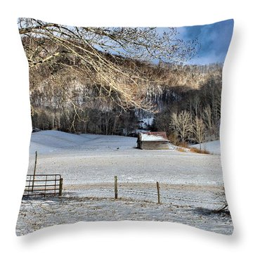 What More Could You Ask For Throw Pillow