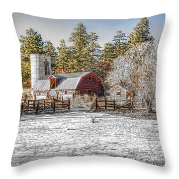 What Once Was Throw Pillow