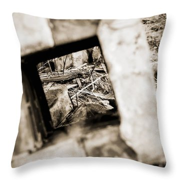 Throw Pillow featuring the photograph What Remains by Amber Kresge