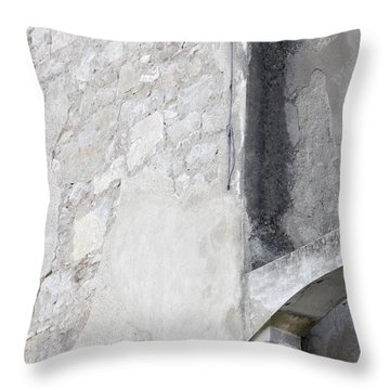Throw Pillow featuring the photograph What Remains by Colleen Williams