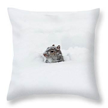What The ... Throw Pillow