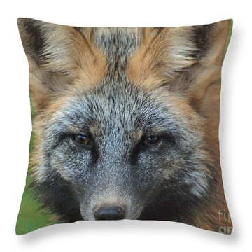 What The Fox Said Throw Pillow