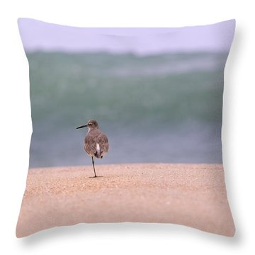 What Wave By Denise Dube Throw Pillow