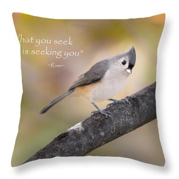What You Seek Throw Pillow by Bill Wakeley