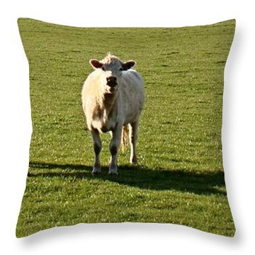 Whatcha Doing Throw Pillow by Nick Kloepping