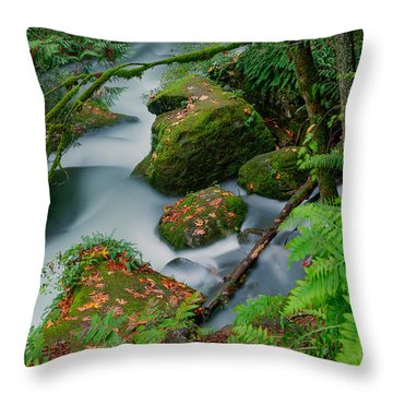 Whatcom Falls 1 Throw Pillow