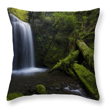 Whatcom Falls Serenity Throw Pillow by Mike Reid