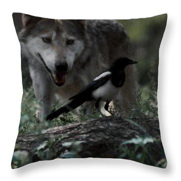 Whats For Dessert Throw Pillow by Ernie Echols