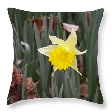 Throw Pillow featuring the photograph Whats Up Buttercup by Nick Kirby