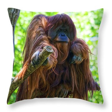 What's Up Throw Pillow by Heiko Koehrer-Wagner