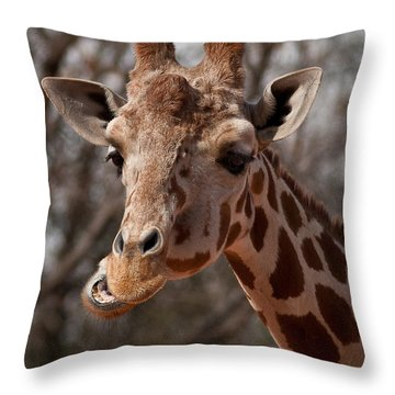 What's Ya Talking About? Throw Pillow by Steven Reed
