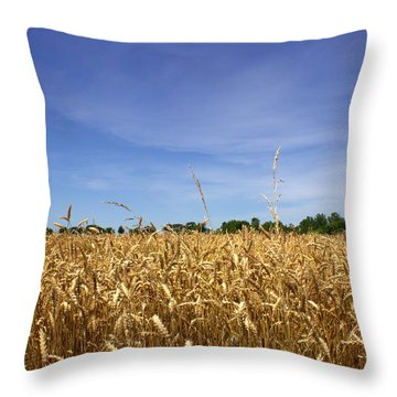 Wheat Field II Throw Pillow