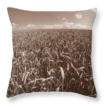 Wheat Fields Forever Throw Pillow