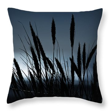 Wheat Stalks On A Dune At Moonlight Throw Pillow by Nick  Biemans