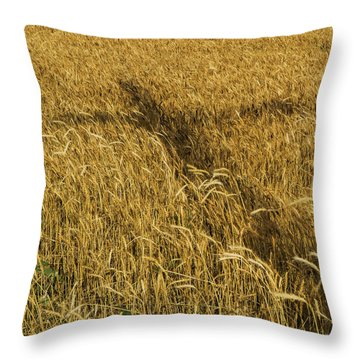 Wheat With Cross  Throw Pillow by Rob Graham