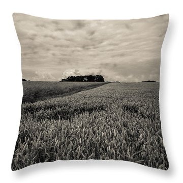 Wheatfields Throw Pillow