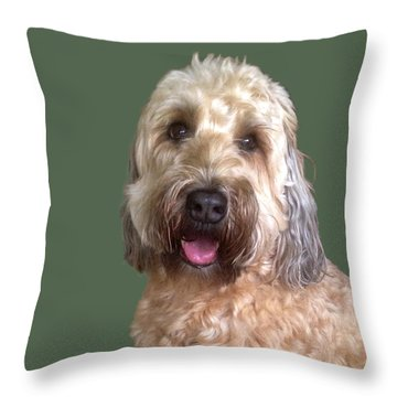 Throw Pillow featuring the photograph Wheaton Terrier by Karen Zuk Rosenblatt