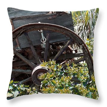 Wheels In The Garden Throw Pillow by Glenn McCarthy Art and Photography