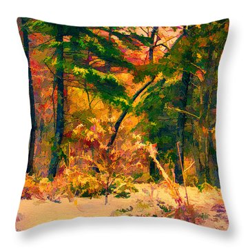 When Fall Becomes Winter Throw Pillow