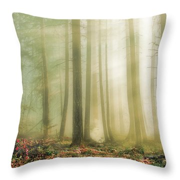 When God Smiles Throw Pillow