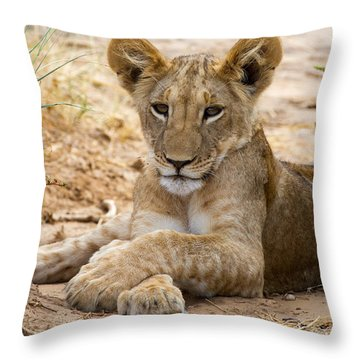 When I Am King Throw Pillow