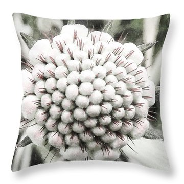 When I'm 64 Throw Pillow by Steve Taylor