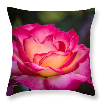 Throw Pillow featuring the photograph When It's Love by Patricia Babbitt