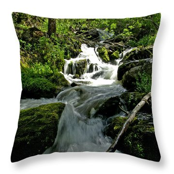 When Snow Melts Throw Pillow