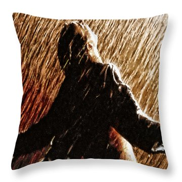 When That Moment Arrives Throw Pillow by Joe Misrasi