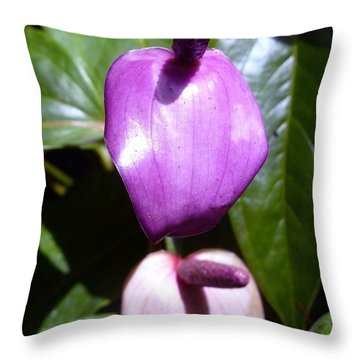 When The Anthurium Sees Its Shadow Throw Pillow
