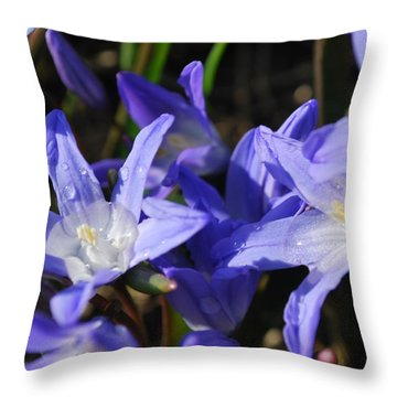When The Sun Comes Out II Throw Pillow by Micheline Heroux