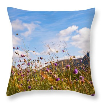 When The Sun Is Shining Everything Around Smiling Towards. Scotland Throw Pillow