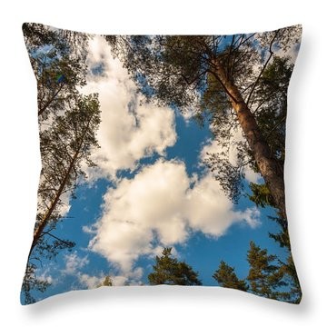 When The Time Stopped Throw Pillow