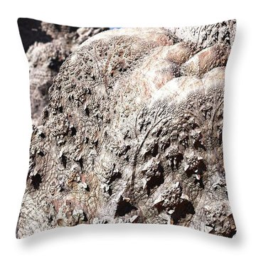 When The Trees Have Gone Throw Pillow