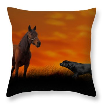 When We Met Throw Pillow