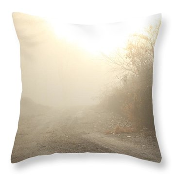 Where Does The Road Lead Throw Pillow by Karol Livote