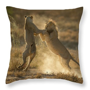 Dueling Throw Pillows