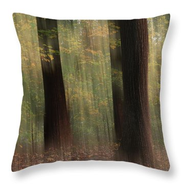Where Faeries Play Throw Pillow