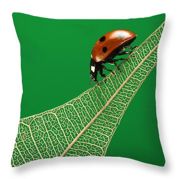 Where Have All The Green Leaves Gone? Throw Pillow by William Lee