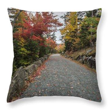 Where I Go Throw Pillow by Jon Glaser